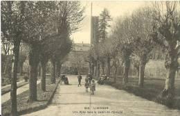 20 - LIMOGES - Une Allée Dans Le Jardin De L'Évêché - Limoges