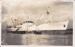 DRAMMENSFJORD  NORWAY Den Norske Amerikalinje A/S   Built 1955 Photo-card Sized Postcard - Commercio