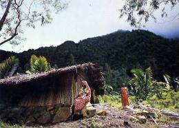 ANJOUAN Comores Demeure Paysanne - Comores