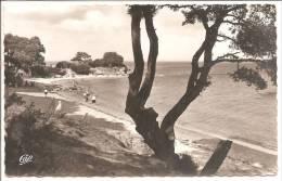ILE DE NOIRMOUTIER  - La Plage De La Pointe Saint Pierre - N°88 - Ile De Noirmoutier