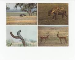 Portugal Cor 23425 - MOÇAMBIQUE MOZAMBIQUE - GORONGOSA - HIENA MACACOS ELEFANTE IMPALA - Mozambique