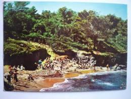 Cote D'azur ( 83 ) La Madrague De Giens - Camping D'olbia - Ses Calanques ( Scann Recto Verso ) - Francia