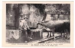 73 - Abbaye D'Hautecombe - La Fontaine Située En Face De L'entrée Royale - Editeur: ? (boeuf) - Altri Comuni