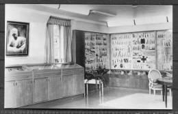 Circa 1935 Sweden Stockholm Medical Museum (Asogatan 146) RP Postcard - Sweden
