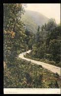 NOUVELLE ZELANDE DIVERS / Foot Of Otira Gorge / - Nouvelle-Zélande