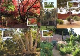 Australia 2013 Botanic Gardens Set Of 5 Maximum Cards - Cartoline Maximum