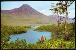 IRLANDE - Connemara  - Circulé - Circulated - Gelaufen - 1971. - Altri