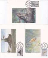 Letland 1997 Birds - Unclassified
