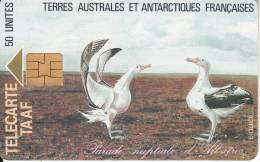 """TAAF - Parade Nuptiale D"""" Albatros, Tirage 1500, 05/95, Used - TAAF - French Southern And Antarctic Lands"""
