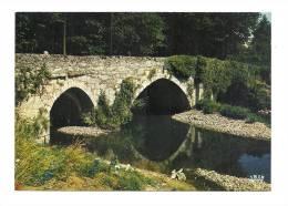 cp, 87, Saint-Junien, Le Pont Romain de Ste-Elisabeth