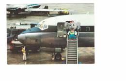 Avion Avec Publicité éléphant Néocide , En 1969 - 1946-....: Modern Era