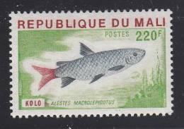 Mali MNH Scott #260 220fr Alestes Macrolepidotus - Fish - Mali (1959-...)