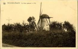 SINT-LIEVENS-ESSE ~ Herzele (O.Vl.) - Molen/moulin - Oude Prentkaart Van De Verdwenen Biezelenbergmolen - Herzele