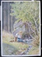LITHO Allemande 12X17 Illustrateur Signé PAUL HEY Deutsche Marchen 4 N° 14  Bruderchen Schwesterchen  GRIMM - Sammlungen