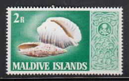 Maldives MNH Scott #287 2r Marine Snail Shells - Maldives (1965-...)