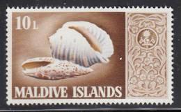 Maldives MNH Scott #283 10l Marine Snail Shells - Maldives (1965-...)