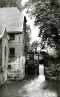 ETIKHOVE Bij Maarkedal (O.Vl.) - Molen/moulin/mill - De Ladeuzemolen Op De Maarkebeek, 20 Jaar Geleden. - Maarkedal