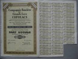 Part Sociale : Compagnie Foncière Des Grands Lacs  COFOLACS & - Afrique