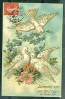 Souvenir Affectueux , Pigeons , Carte Gauffrée    - Ux47 - Fantaisies