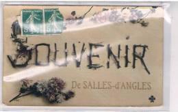 16   SOUVENIR  DE    SALLES  D´ANGLES - Altri Comuni