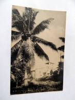 Carte Postale Ancienne : PALAU : Spanish Church Belau Caroline Islands - Palau
