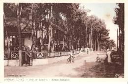 44 QUIMIAC  Bois De Lanseria Avenue Principale - France