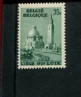 BELGIE POSTFRIS MINT NEVER HINGED EINDWANDFREI OCB 484-V1 - Variétés (Catalogue COB)