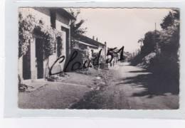 AUTRY  (08) Une Rue Du Village - Otros Municipios