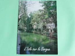 L'ISLE SUR SORGUE - Promenade Sur Les Rives Verdoyantes Du Canal - L'Isle Sur Sorgue