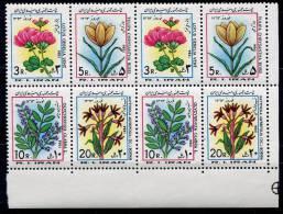 Iran       1881/1884  **   Double Feuillet        Fleurs/flowers - Iran