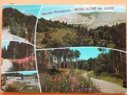 V9-04-alpes De Haute Provence--la Montagne De Lure-1975 Multivues - Non Classificati