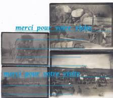 Photo 1915 Parc De Cantonnement  HARAVESNES 62 Pas De Calais Du 6 è Génie ANGERS 49 En Campagne Conflit 1914.18 - War, Military