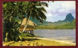 Cpsm  De Polynésie Papeete  Baie De Paopao , Paopao Bay  Moorea Tahiti  PUO6 - Polynésie Française