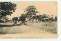 KANKAN : Avenue De Siguiri. 2 Scans. Edition G Et C - Guinée Française