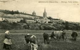 MOUSSEAUX PATURAGES - Montlhery