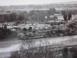 CPSM:  Orléansville Algérie Ex Colonie Française La Ferme Vue Générale 17 Septembre 1952 - Algérie