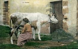 Lot De 3 Cartes , La Traite, Les Foins , Le Nid - Farmers