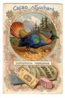Chromo SUCHARD, N° 84 / 5, Serie Avec Poule, Faisan, Coq, Pigeon... - Suchard