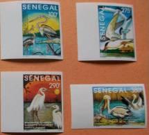 Senegal 1995 Birds 4v Imperforate Mint - Senegal (1960-...)