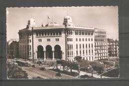 Tarjeta Postal De Argelia - Argelia