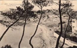 83-SANARY-Plage De La Gorguette à Travers Les Pins- - Sanary-sur-Mer