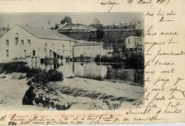 85- MORTAGNE-sur-SEVRE- Bords De La Sèvre Romaine-Dos Non Divisé - Mortagne Sur Sevre