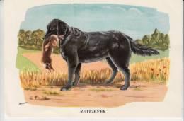 Publicité  - Laboratoire Biolactyl - Illustration Horber - Retriever (chien De Chasse) - Publicités