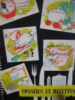 CONSEILS ET RECETTES D'OZO - Gastronomie
