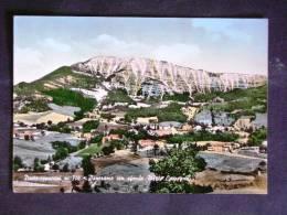 MARCHE -PESARO -CARPEGNA -F.G. LOTTO N°286 - Pesaro