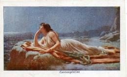 Contemplation Raynaud Illustration Colorisée Publicite Emile Bonzel Chicoree - Illustrators & Photographers