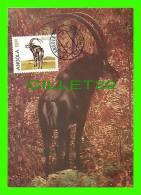 MAXIMUM CARDS -  ANGOLA - PALANCA PRETA GIGANTE - HIPPOTRAGUS NIGER VARIANO - 1987 - ANIMAL - - Angola