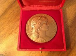 Médaille Bronze République Française Monnaie De Paris (offert Par Président République 1972) - Monnaie De Paris