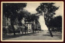 Cpa  Italie  Venezia Lido  Viale S. Maria Elisabetta    PUO25 - Vicenza