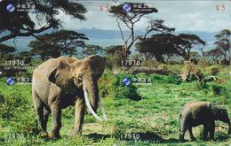 PUZZLE De 4 Télécartes De Chine - ANIMAL - ELEPHANT Phonecards - ELEFANT Telefonkarten - OLIFANT - BE 382 - Puzzles